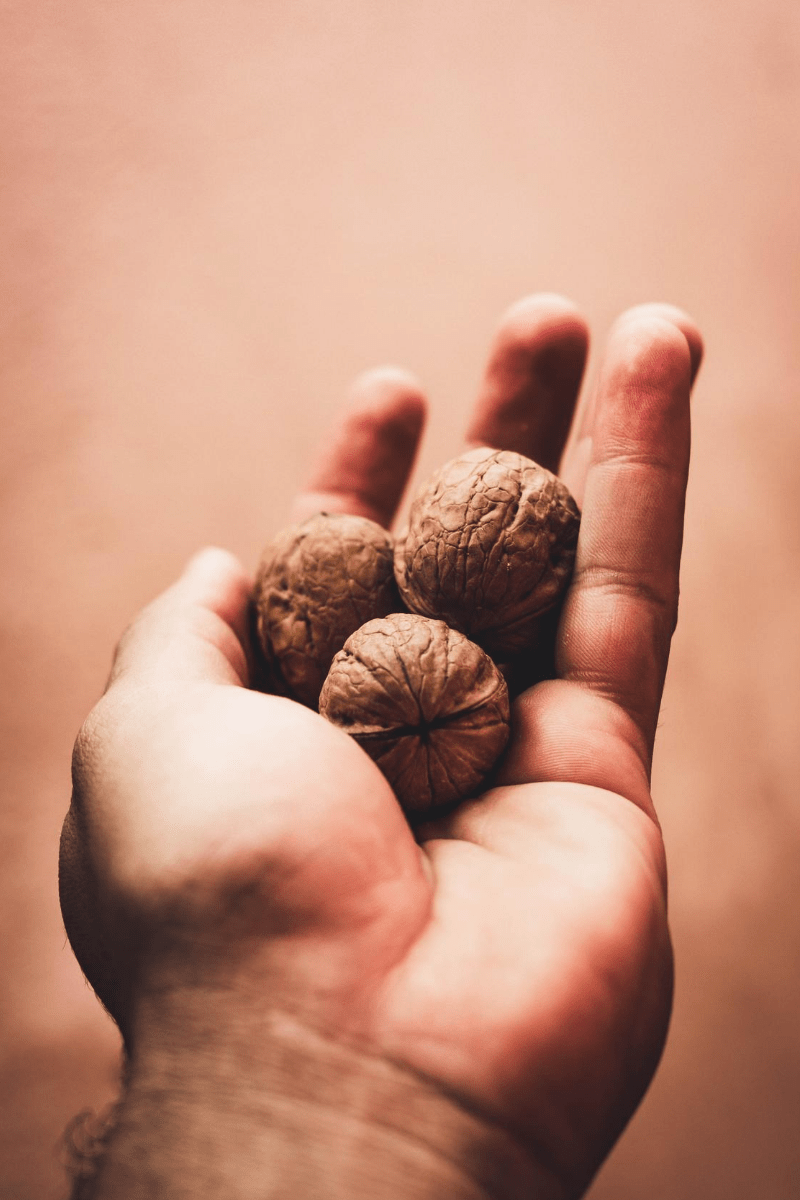 Stress fighting walnuts